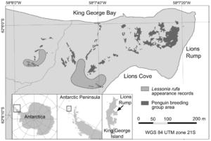 Galeria map - Lions Rump