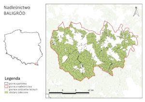 Nadleśnictwo Baligród - mapa wykonana przy pomocy funkcji Atlas w QGIS