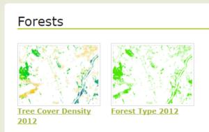 Wysokorozdzielcze dane rastrowe - Tereny zadrzewione – zwarcie (HR Tree Density) oraz Typy lasów (Forest type)