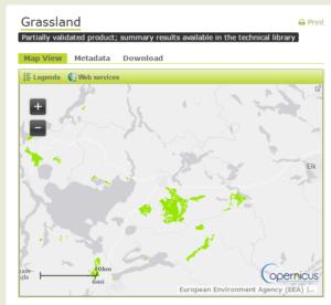 Wysokorozdzielcze dane rastrowe - trwałe użytki zielone (Grassland)