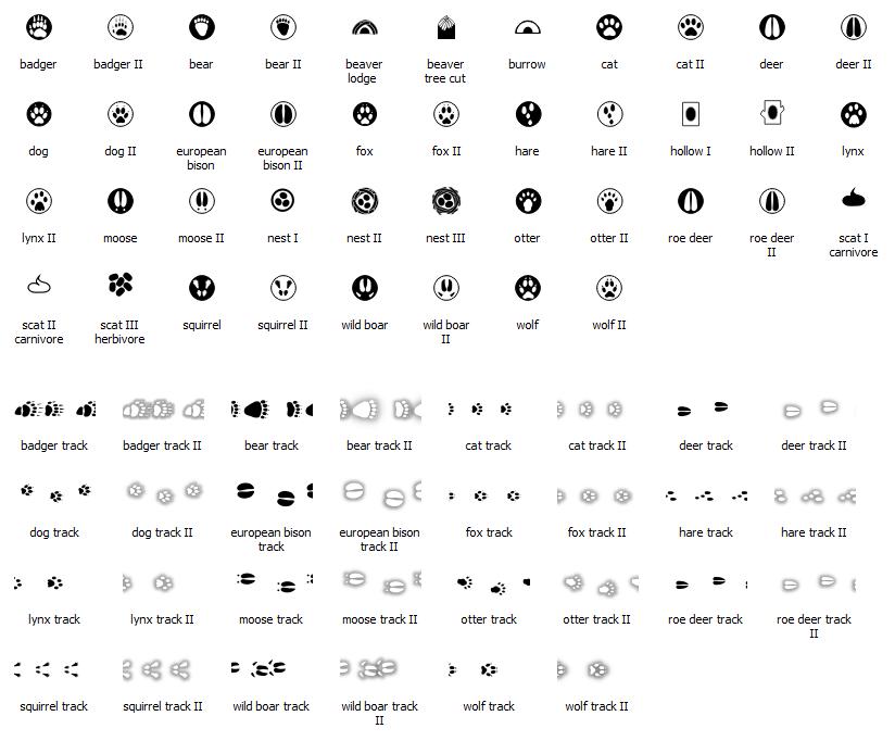 tropy i ślady zwierząt - style QGIS